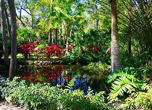 Botanical garden Monaco
