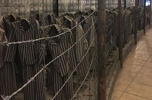 Camp Auschwitz death