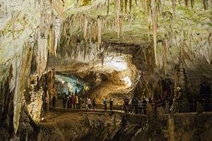 Cave of Postojna Cave