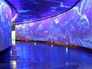 City Aquarium – Milan