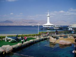 Eilat resort