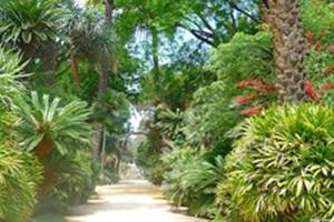 Garden Botanical Sicily