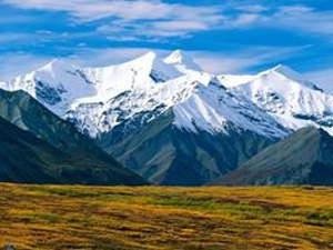 McKinley landscape