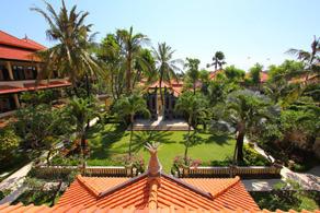 Palm trees in Nusa Dua