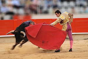 Portugal, bullfight