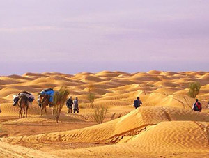 Sand of Tunisia