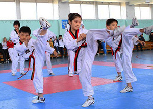 Taekwondo South Korea