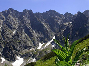 Tatr's mountains. Poland