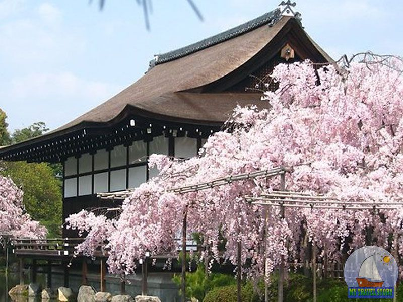 The interesting facts about Japan