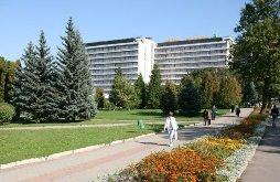 Truskavets resort