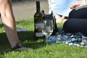 Wine Festival will be held in Prague
